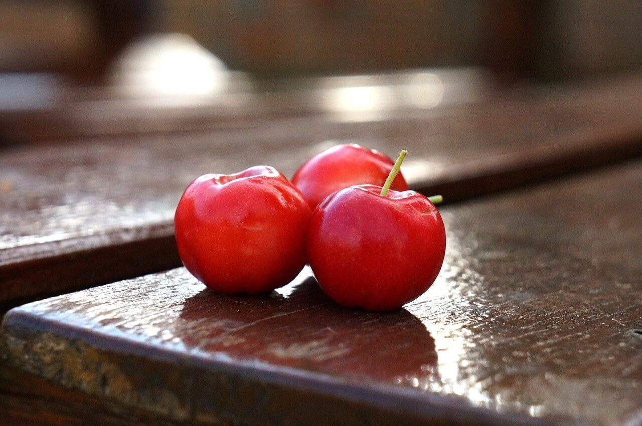 Acerola contains Vitamin C